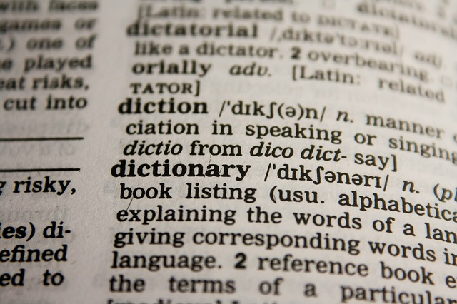 Dictionary meaning of the word naughty
