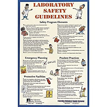 Safety guidelines in a science lab